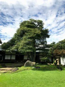 岩崎邸庭園2